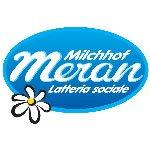Polin Distribuzione - Logo Meran